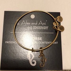 alex and ani -bracelet